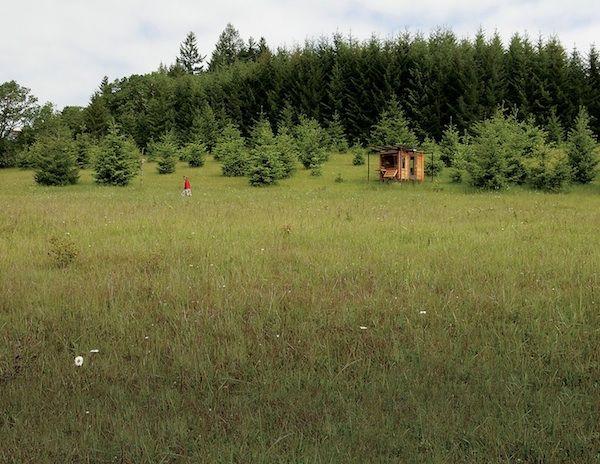 Mobilní kancelář z přírodních materiálů